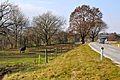 Grafenstein Althofen weidende Pferde 12112011 288.jpg