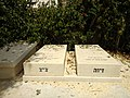 Grave of Shlomo and Ziva Lahat.jpg