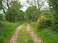 Green Lane - geograph.org.uk - 2458703.jpg