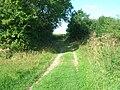 Green Lane near Bainton - geograph.org.uk - 1453829.jpg