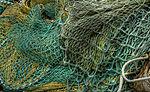 Green twine (8082675106).jpg