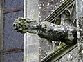 Guern (56) Basilique Notre-Dame de Quelven Gargouille 07.JPG