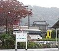 Gunma Bus and Chichibu Railway Kanko Bus 2019.jpg
