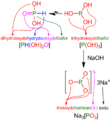 H3PO3 - Nomenklatura addytywna.png