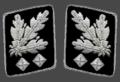 HH-SS-Obergruppenfuhrer-Collar.png
