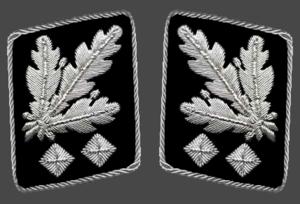 Obergruppenführer - Gorget patches  1942-1945 (Allgemeine SS and Waffen-SS)