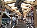 HK ML 半山區 Mid-levels 羅便臣道 Robinson Road escalators n footbridge February 2020 SS2 06.jpg