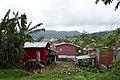 Habitations à São João dos Angolares (São Tomé) (20).jpg