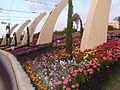 Haifa International Flower Exhibition P1130974.JPG