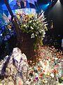 Haifa International Flower Exhibition P1140035.JPG