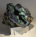 Harvard Museum of Natural History. Azurite. Copper Queen Mine, Bisbee, Cochise Co., AZ (DerHexer) 2012-07-20.jpg
