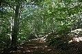 Harz Wanderung Stecklenberg - Hexentanzplatz - Thale - Vom Wurmtahl auf die Harzhochfläche - panoramio.jpg