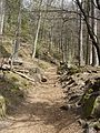 Haut-Koenigsbourg - Weg zur Burg.JPG