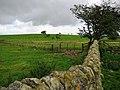 Hay Banks Hill - geograph.org.uk - 544053.jpg