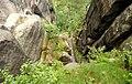 Heilige Stiege - Elbsandsteingebirge - panoramio (10).jpg