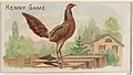 Henny Game, from the Prize and Game Chickens series (N20) for Allen & Ginter Cigarettes MET DP835072.jpg