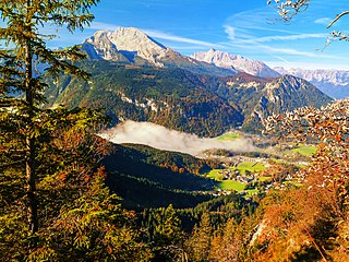 Alps conifer and mixed forests