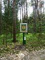 Holovne Liubomlskyi Volynska-nature monument botanical Spruce forest-second guard board.jpg