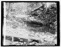 Hoover camp on Rapidan, 8-17-29 LCCN2016843912.jpg