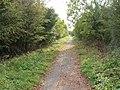 Hornsea Rail Trail - geograph.org.uk - 1528118.jpg