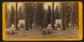 Hotel at Big Trees, - Calaveras Co, by John P. Soule 2.png