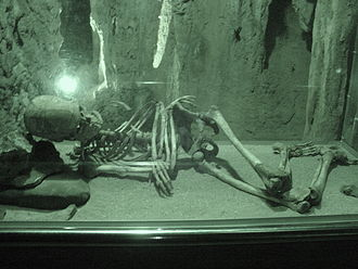 Caves of Nerja - A skeleton found in the caves, now displayed near the entrance.