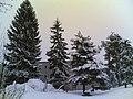 Humikkalanrinne - panoramio (4).jpg