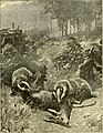 Hunting and trapping stories; a book for boys (1903) (14596028357).jpg
