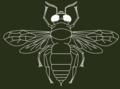 Hymenoptera 1.3.png