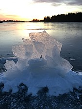 ICE. Umeälven (Umeå River) in Natura 2000 reserve in the Delta. Wintertime. Ice.jpg