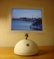 IMac G4 sunflower5.png