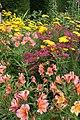Ightham Mote gardens - geograph.org.uk - 1596389.jpg