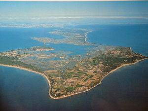 Île de Ré - Île de Ré