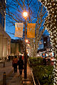 Illumination-in-Omotesando-2010-03.jpg