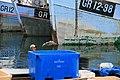Ilulissat fish.jpg