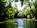 Indiana, Cedar Creek near the St. Joseph River.jpg