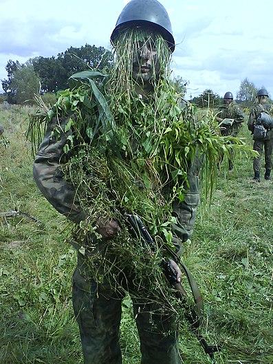 Individual.camouflage.jpg