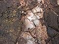 Intergranular calcite in autobrecciated amygdaloidal tholeiite basalt aa lava flow top (flow B, Two Harbors Basalts, North Shore Volcanic Series, Mesoproterozoic, 1097-1098 Ma; Burlington Bay, Two Harbors, Minnesota, USA) 9.jpg