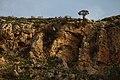 Ira ^ Yargha Sub-District, Jordan - panoramio (4).jpg