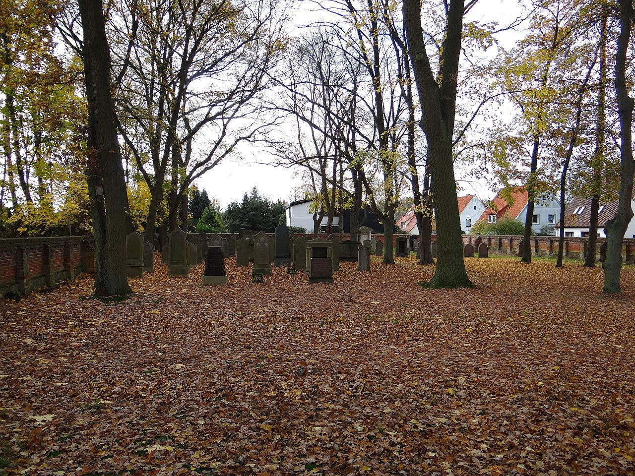 Jüdischer Friedhof Verden, Blick über die Mauer, 5453.jpg