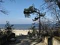 Jūrmala - panoramio (1).jpg