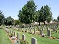 JERUSALEM WAR CEMETERY - D7-08-1439.JPG
