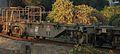 JRF koki107-101.jpg