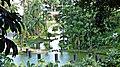 """Jardim Botânico Foi incluido no guia """"100 destinos Imperdíveis do Estado de São Paulo"""", uma publicação da Secretaria de Turismo do Estado e da Federação dos Convention and Visitor Bureau. - panoramio.jpg"""