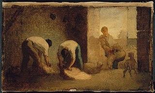 Three Men Shearing Sheep in a Barn