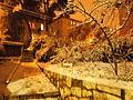 Jerusalen nevada 33.JPG
