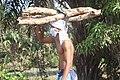 Jeune en masque transportant des fagot de boie.jpg