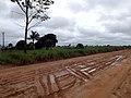 Ji-Paraná - Rondônia, Brasil - RO-480 - Linha 128 Tressão - Projeto Riachuelo - panoramio.jpg