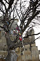 Jivari monastery, Mtskheta, Georgia. A tree with cloth ribbons and small pieces of canvas tied to its branches. Detail..jpg