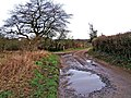 Junction of bridleway with farm road to Droppingwells Farm - geograph.org.uk - 665642.jpg